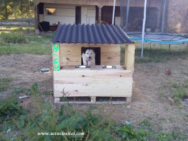 niche pour chien en palettes